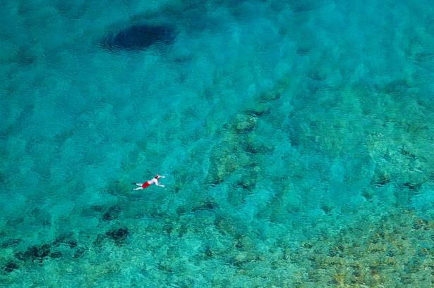 Swimming In A Sea