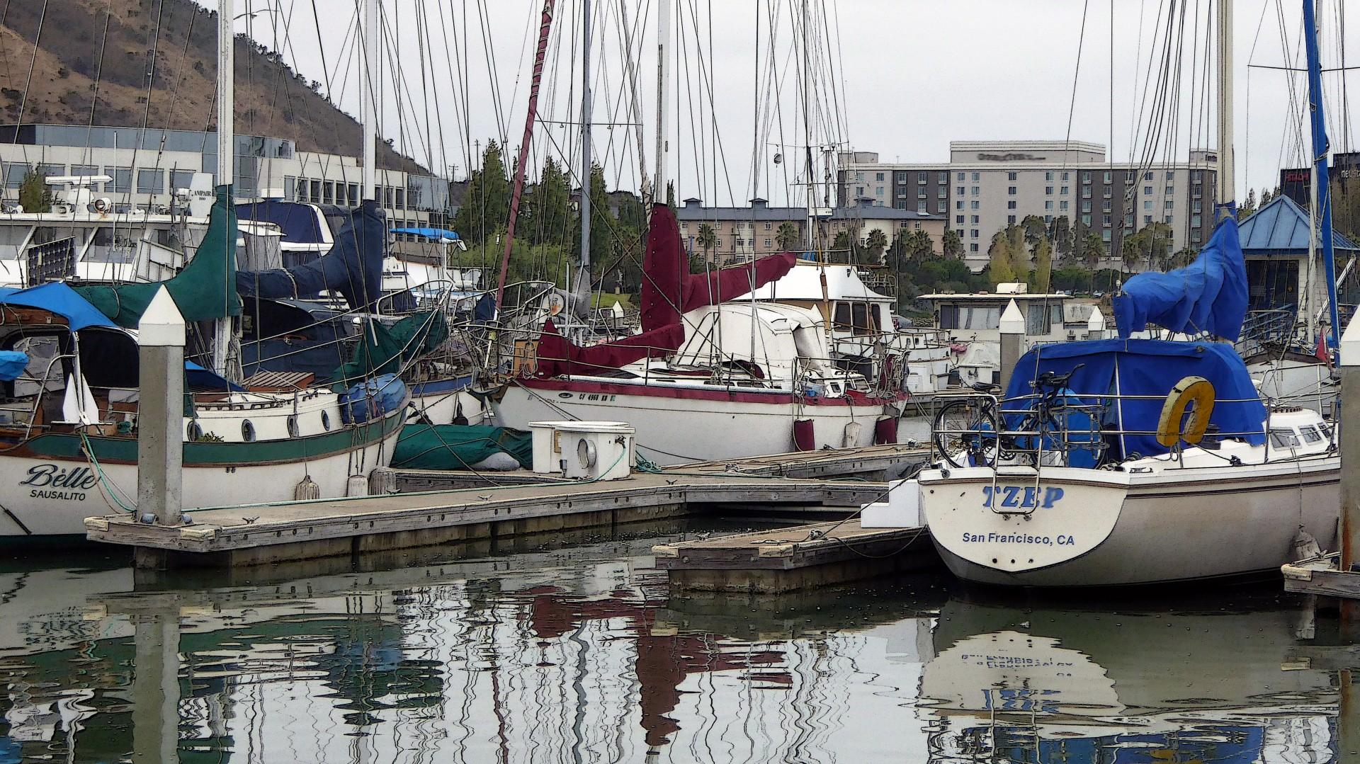 sailboats, sailing, boats