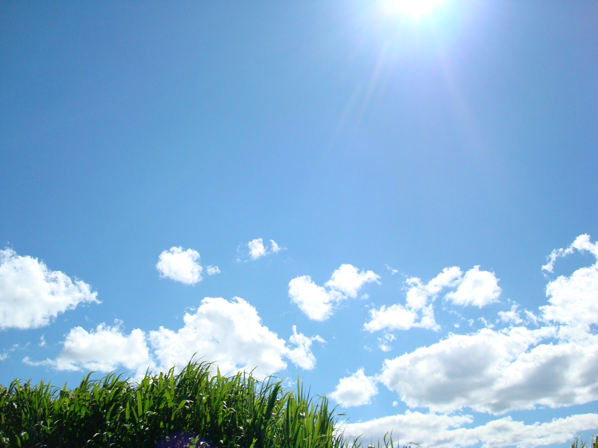 Blue Sky Free Stock Photo Public Domain Pictures