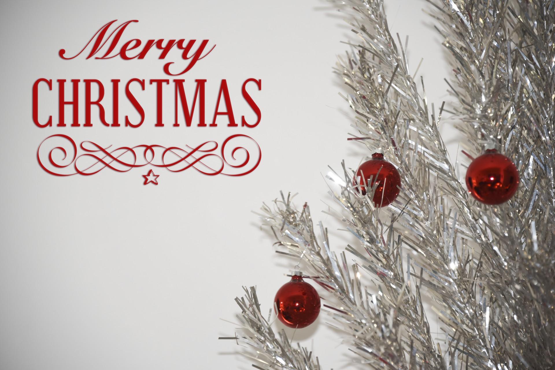 Christmas Greeting Tree Free Stock Photo Public Domain
