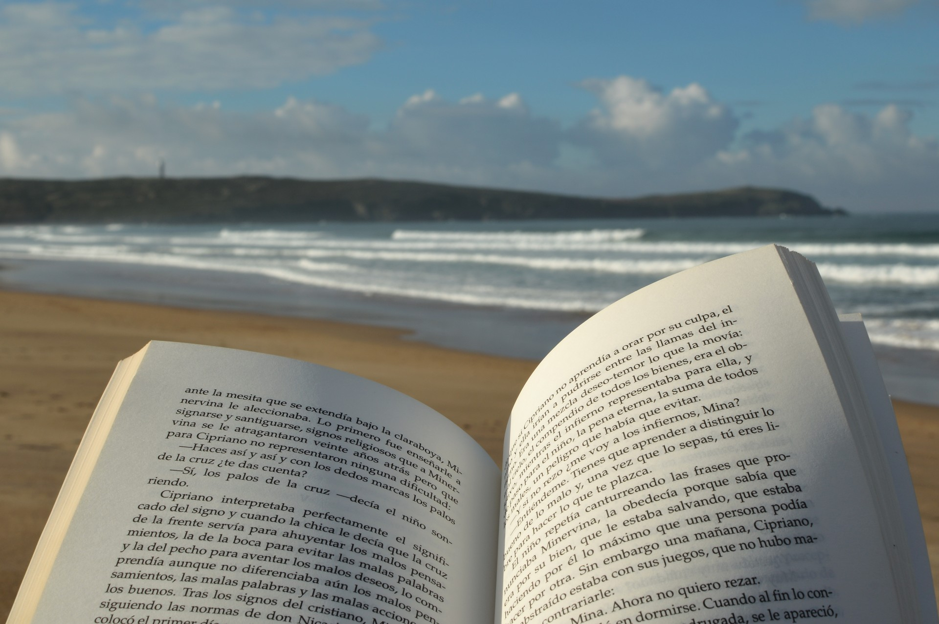 Image result for reading a book on the beach free picture