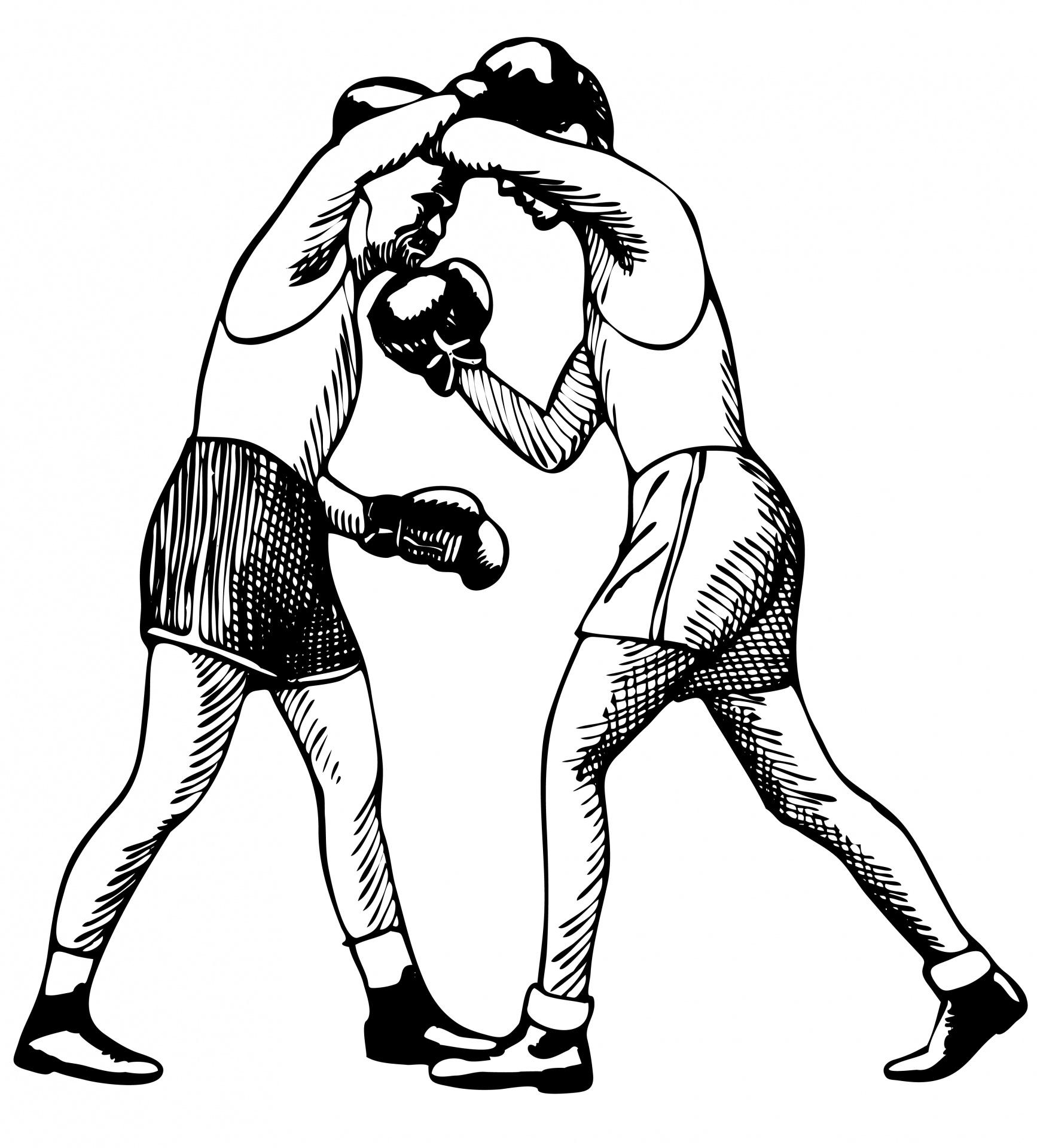 Boxning Illustration Clipart Gratis Stock Bild