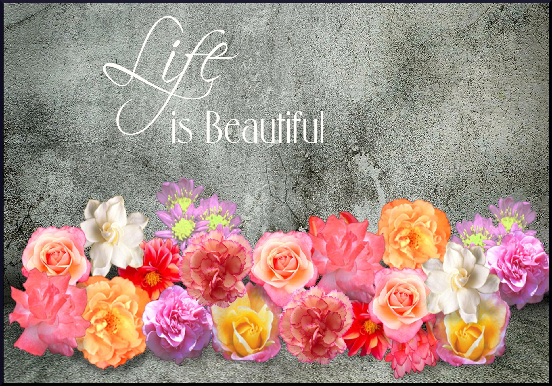 life, inspiration