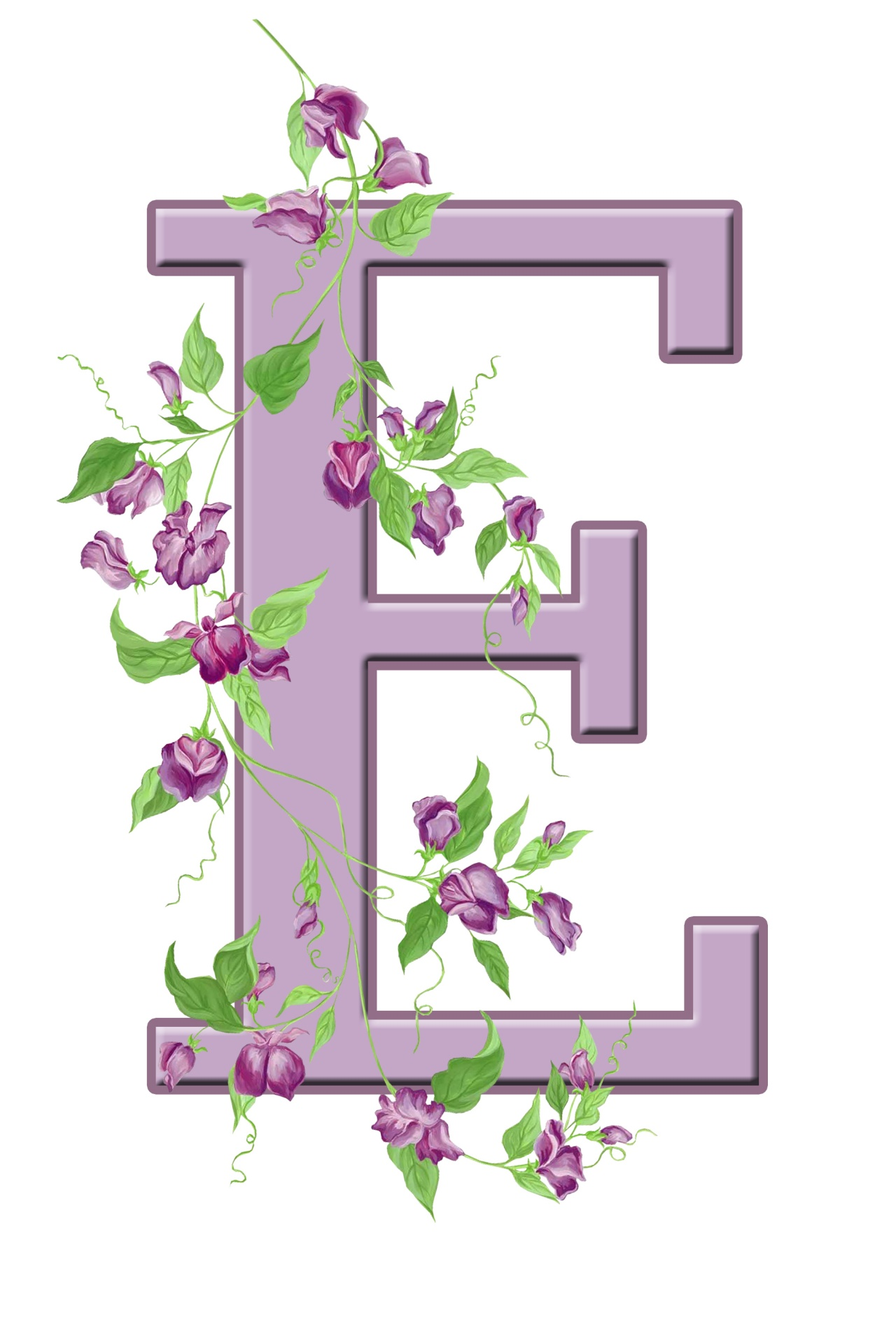 Letter E Floral Initial Free Stock Photo