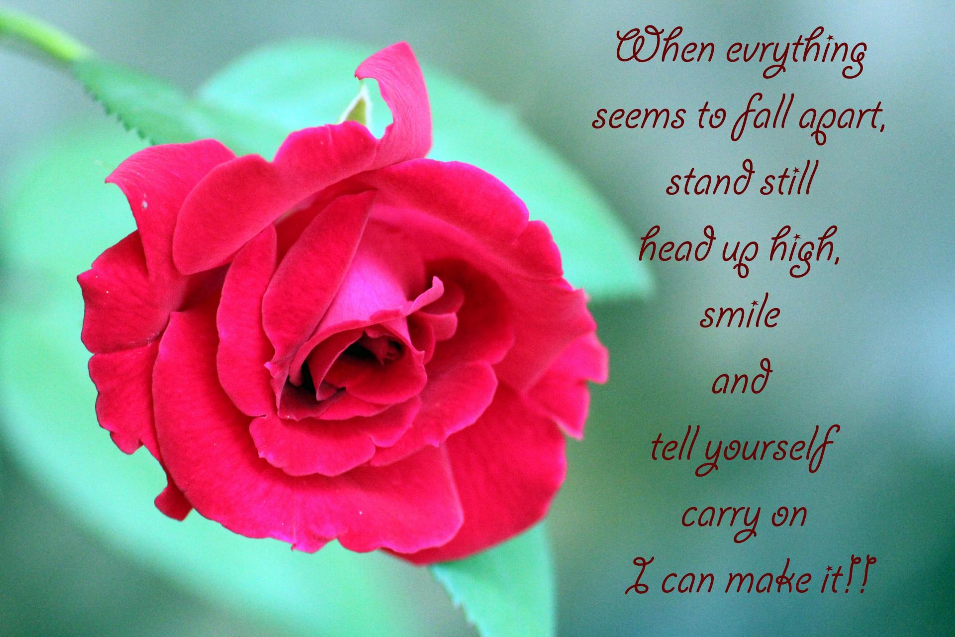 Inspirational Quote, Courage, Encouragement