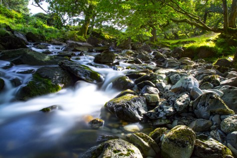 水流の風景
