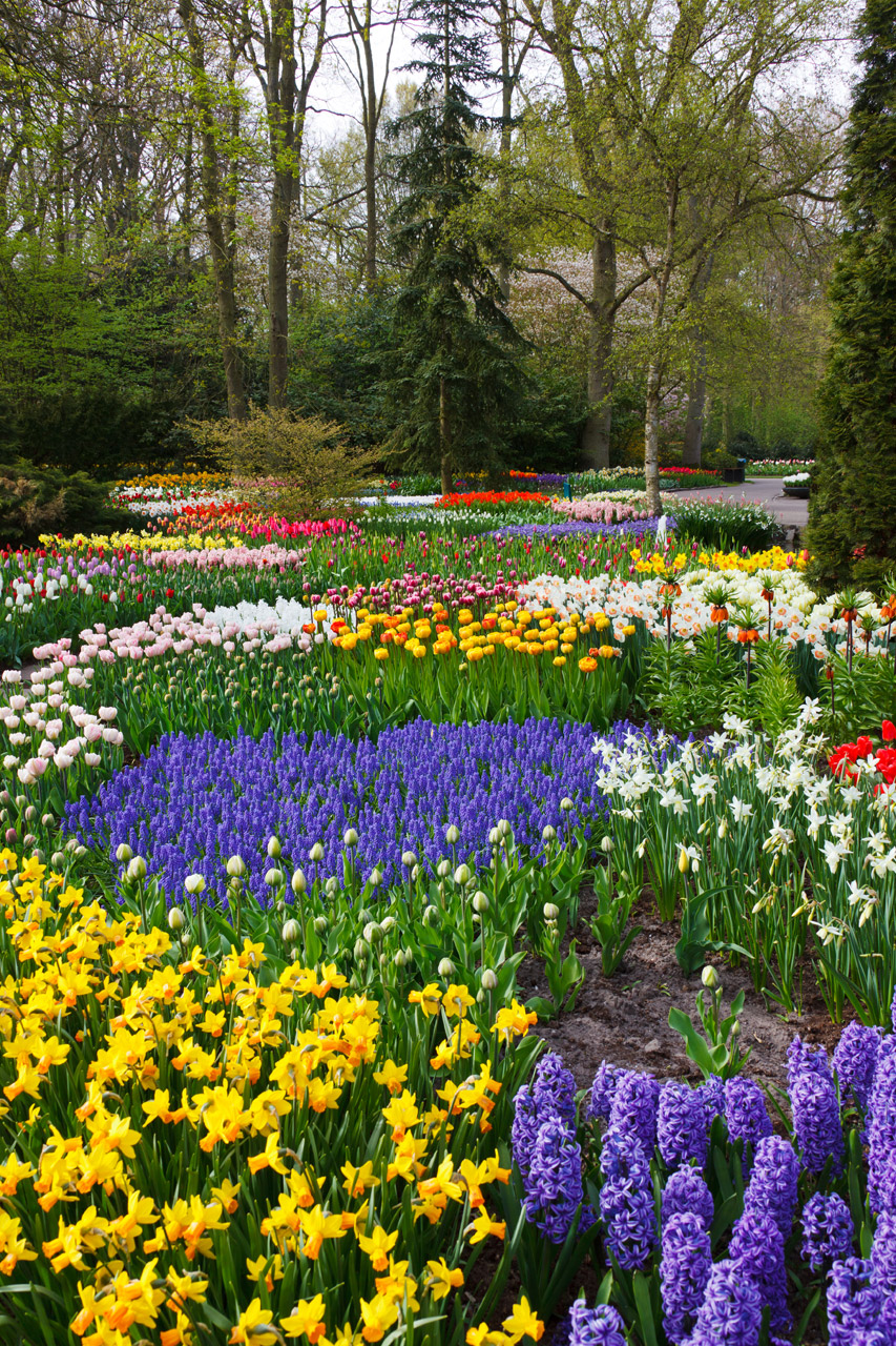 National Garden Month, Gardens, Nature