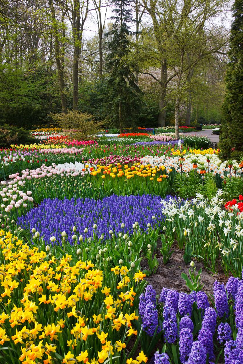 National Garden Month, Gardens, Nature