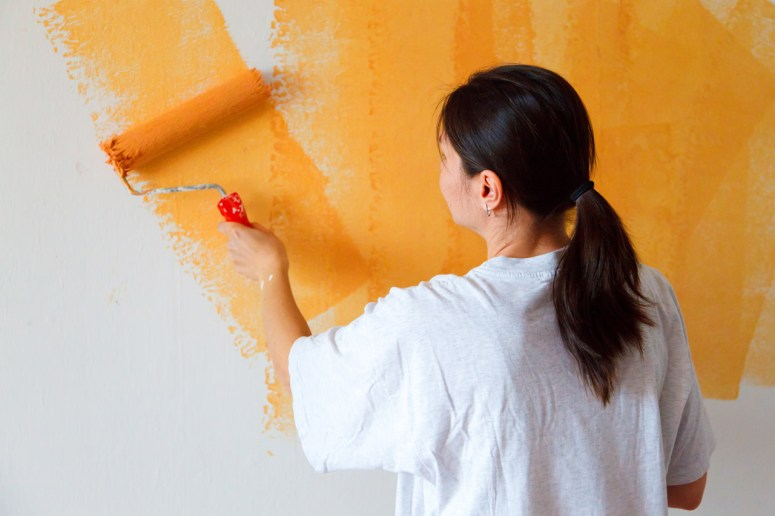 bossprincess101 color painting house