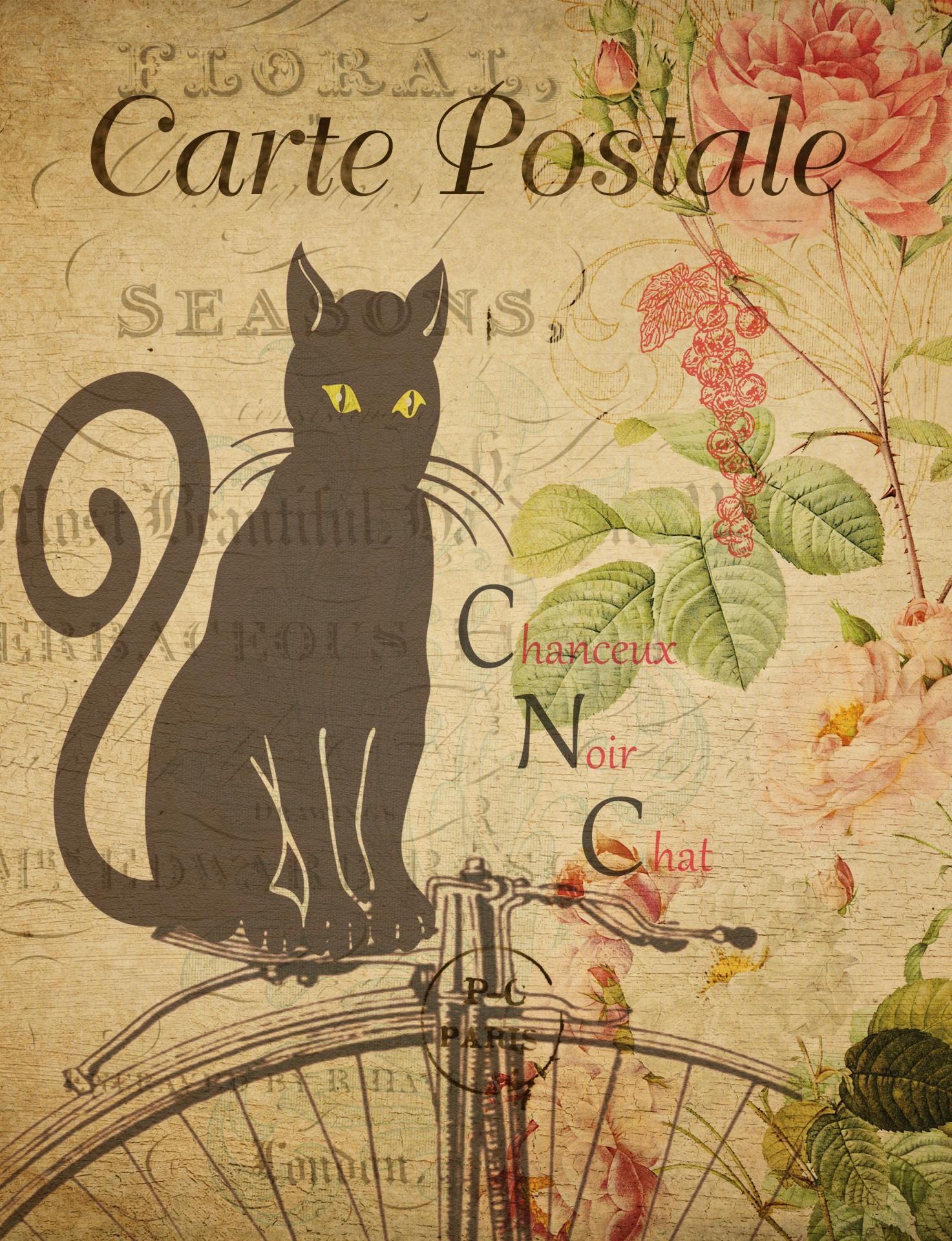 Black Cat Vintage Postage Free Stock Photo Public Domain