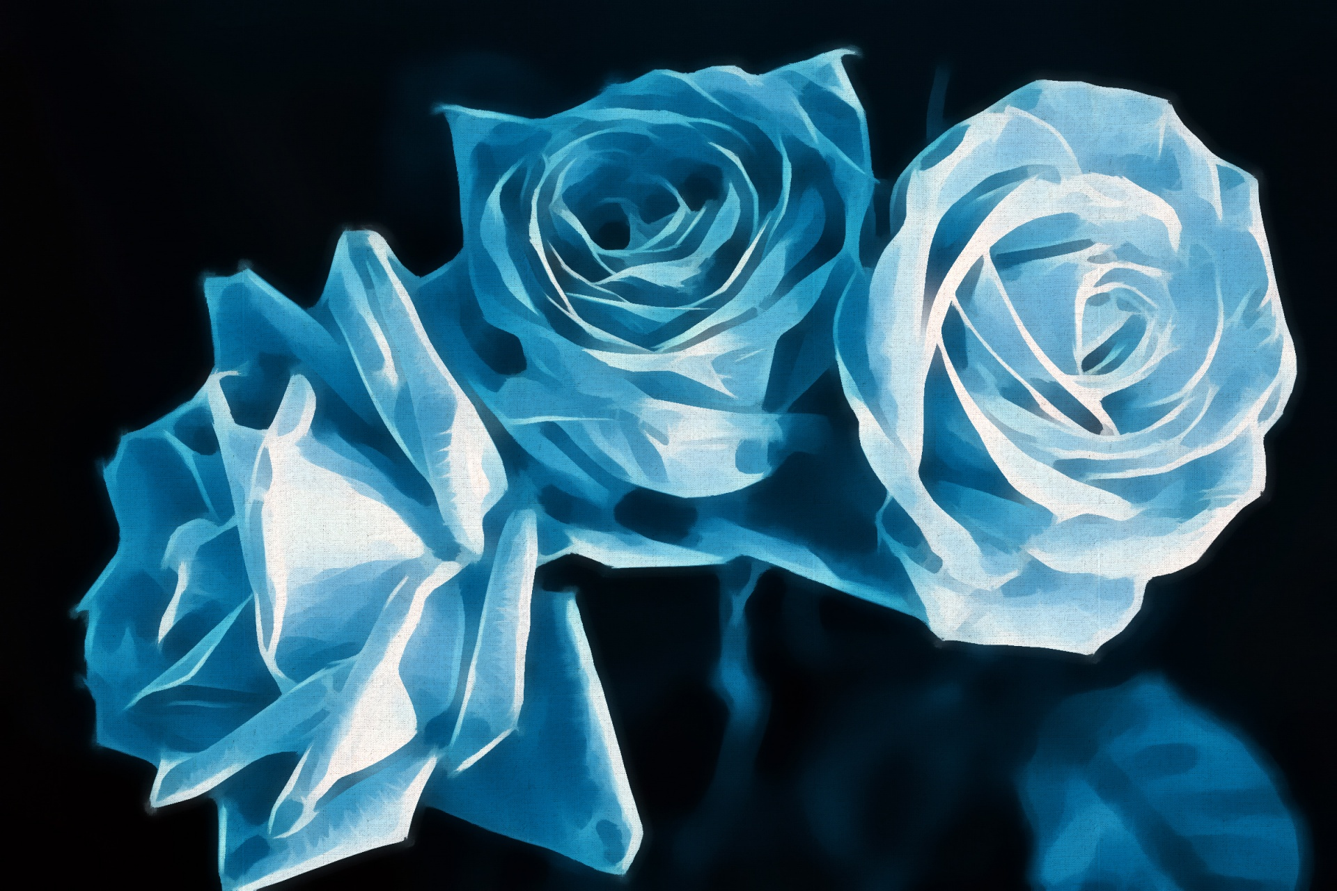 Blue Roses Free Stock Photo Public Domain Pictures