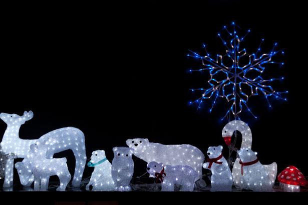 Christmas Lights Snowflake