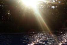 Sun Rays 4
