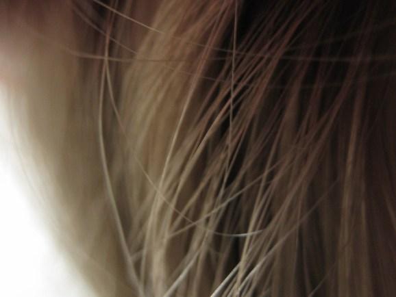Resultado de imagen de free hair