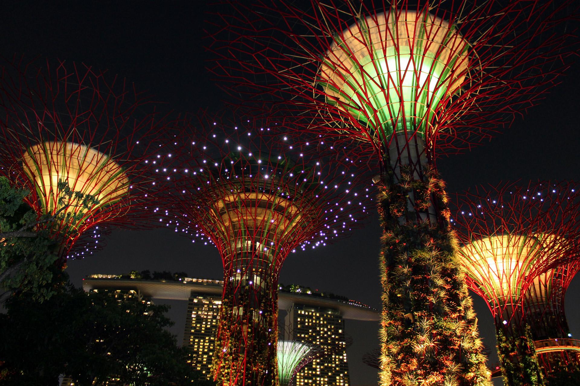 Art, Sculptures, Singapore, Sky Tree, Botanical Gardens