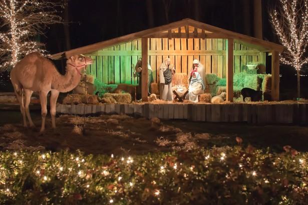Christmas Holiday Manger Free Stock Photo Public Domain