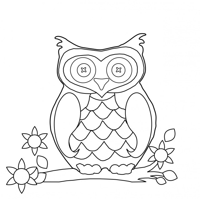 Owl Coloring Page Clipart Free Stock Photo - Public Domain Pictures