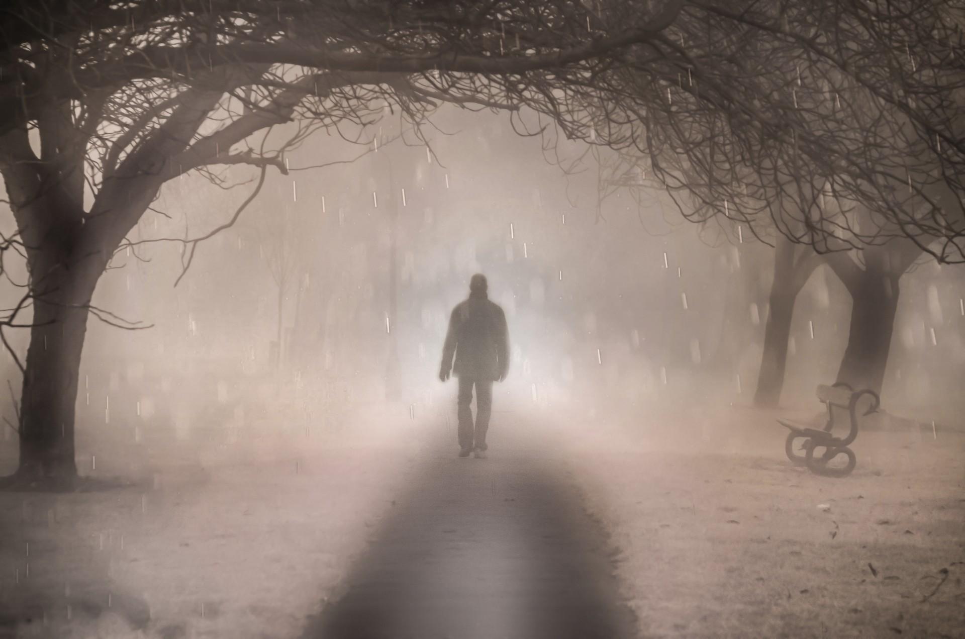 Image result for walking in mist