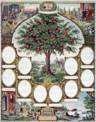 Family Tree Photo Holder