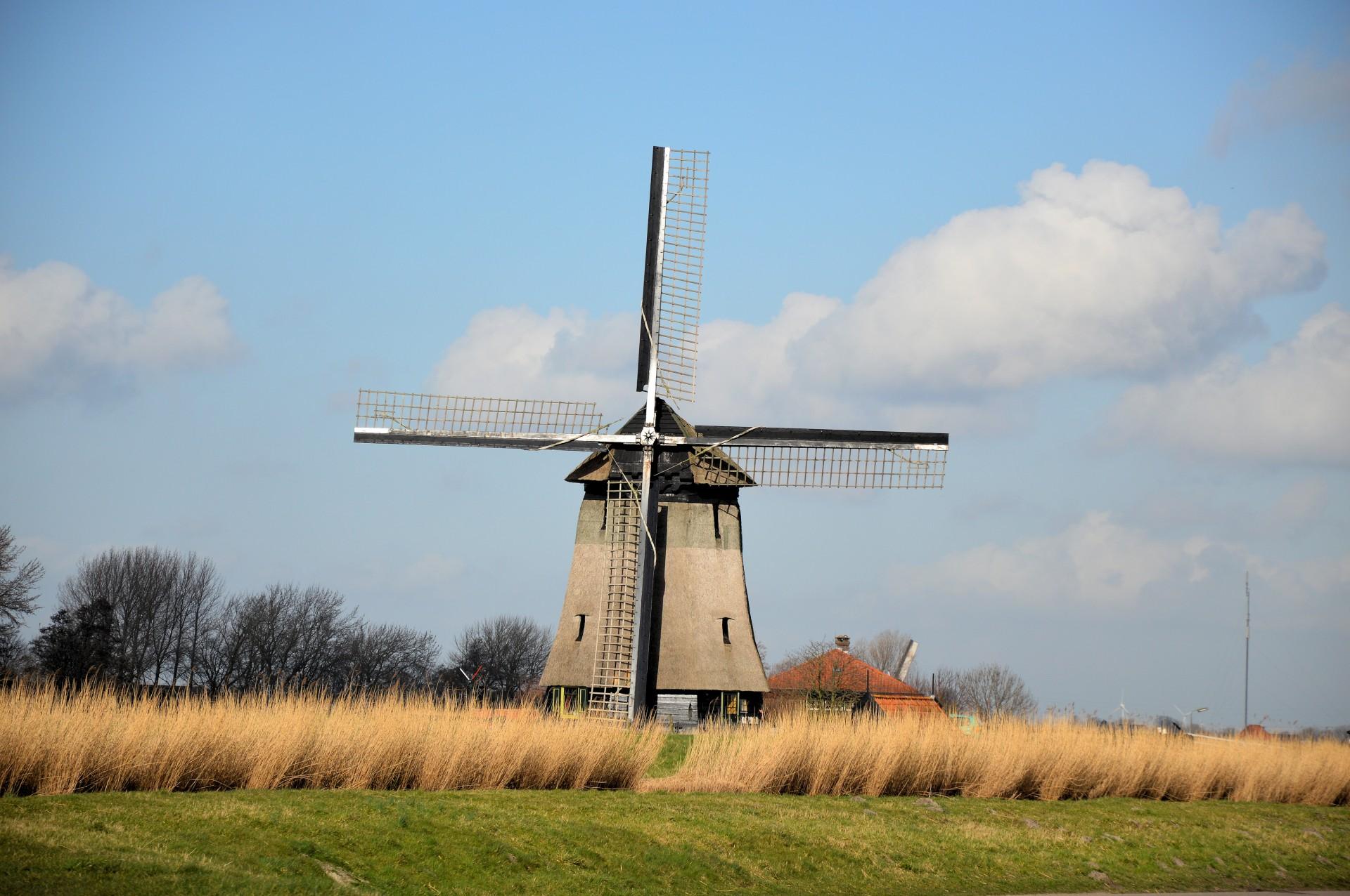 Poetry, Windmills, Energy