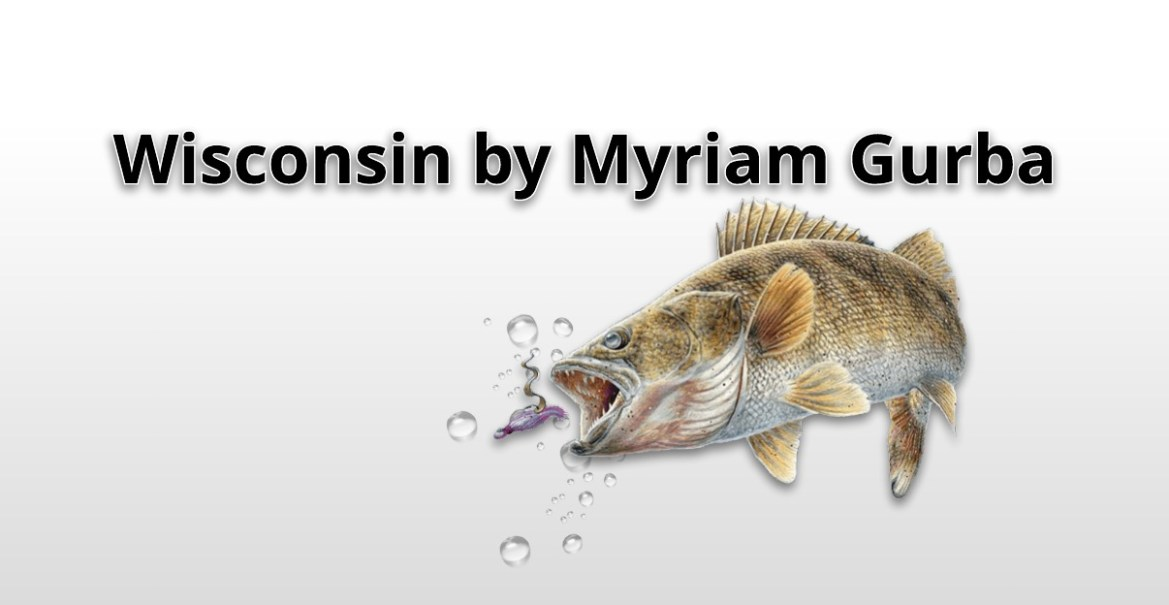 Wisconsin by Myriam Gurba
