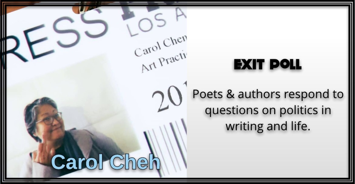 Carol Cheh, Exit Poll
