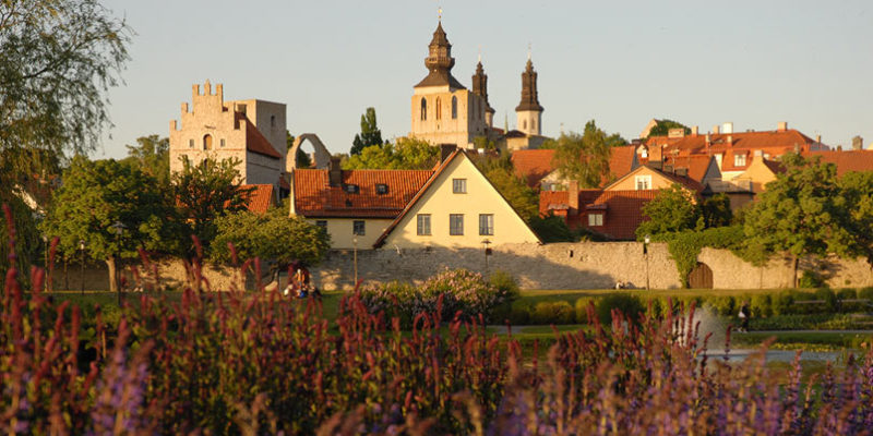 An image of Visby, in Sweden, including a field of flowers and the spires of an old church.