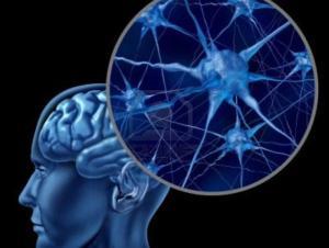 Think Tank Brain