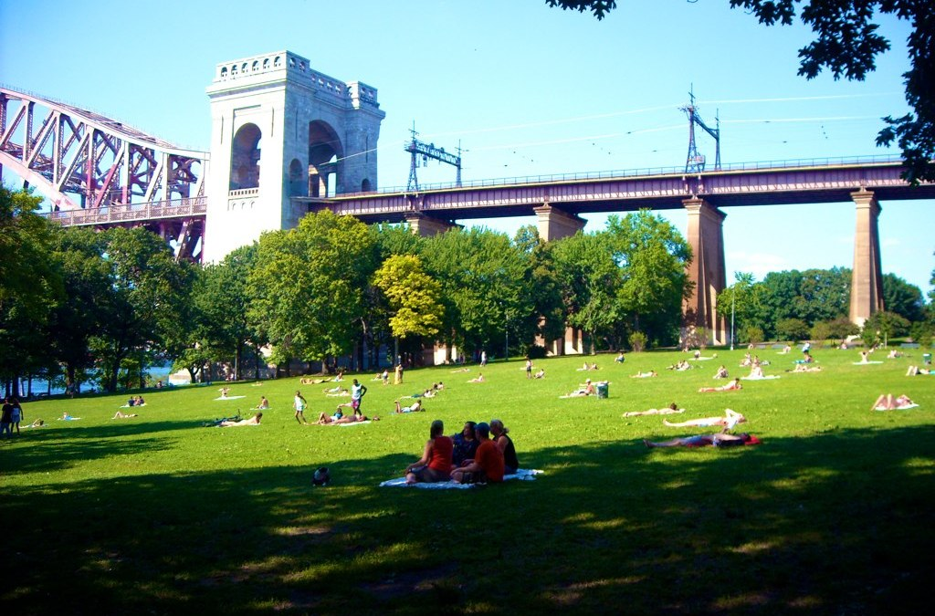 A bridge in a park