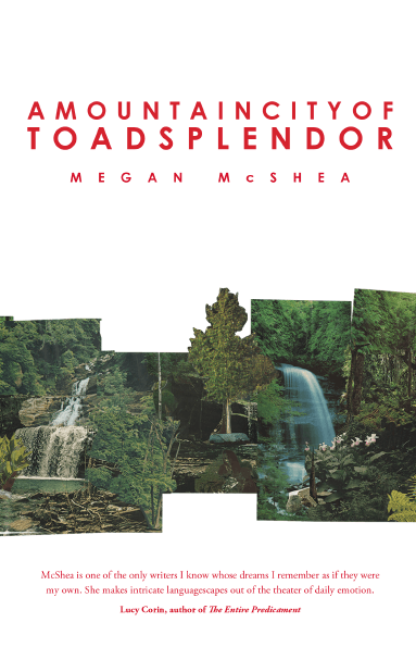An Afternoon of Toad Splendor