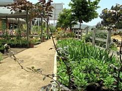 21_jardinesMaitencillo