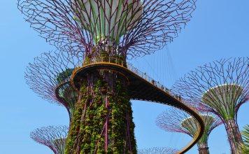 Singapur, el primer mundo del primer mundo.