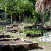 botanical-garden-mainb