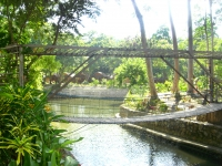 Photo of wood and rope bridge suspended over freshwater seasonal lagoon Puerto Beach Resort
