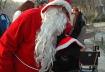 Weihnachtsmann im Zoopark