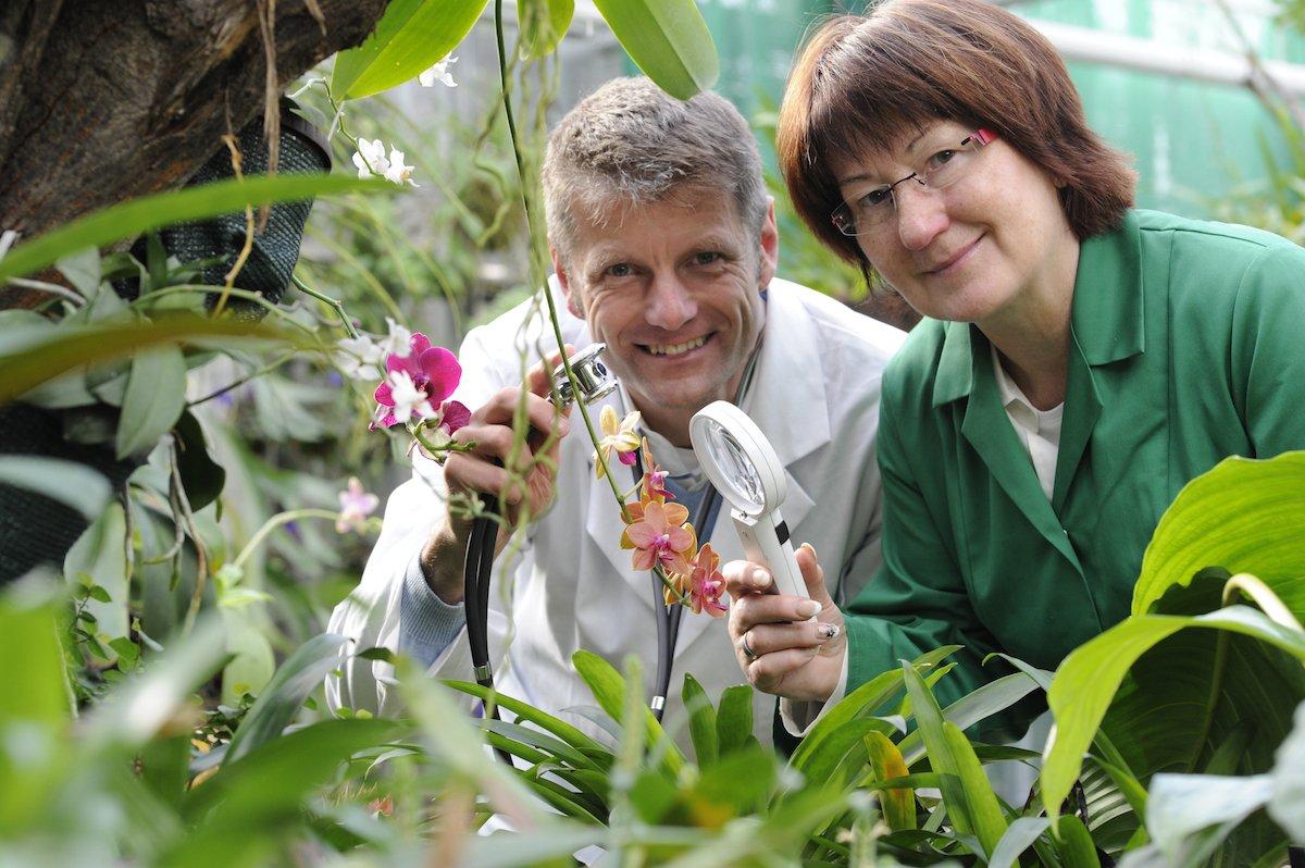 Egapark Pflanzendoktor Hält Sprechstunde Bei Du Und Dein Garten