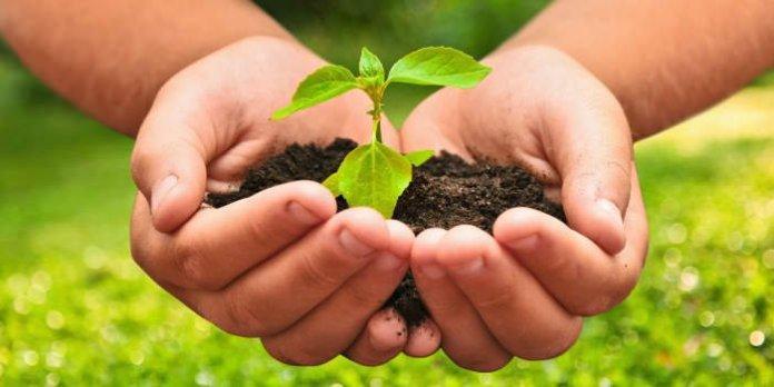 Gewährung von Zuschüssen zur Förderung von Maßnahmen des Umwelt- und Naturschutzes