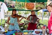 Aktionstag Nachhaltigkeit am 25. Mai begeistert mit über 40 Initiativen