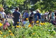 Erfurts Fuchsfarmer feiern 25 Jahre NaturErlebnisGarten