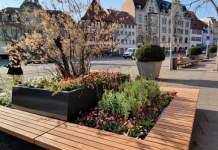 Ein großer Platz und im Vordergrund ein Hochbeet mit Pflanzen,drumherum sind Sitzbänke angeordnet.