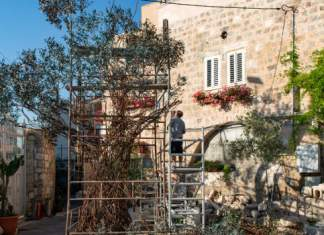ein Baum aus Metall steht umhüllt von Leitern zur Bearbeitung auf dem Hof des Künstlers