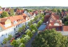 Das Bild zeigt eine Straße, die in der Mitte mit Bäumen begrünt ist.