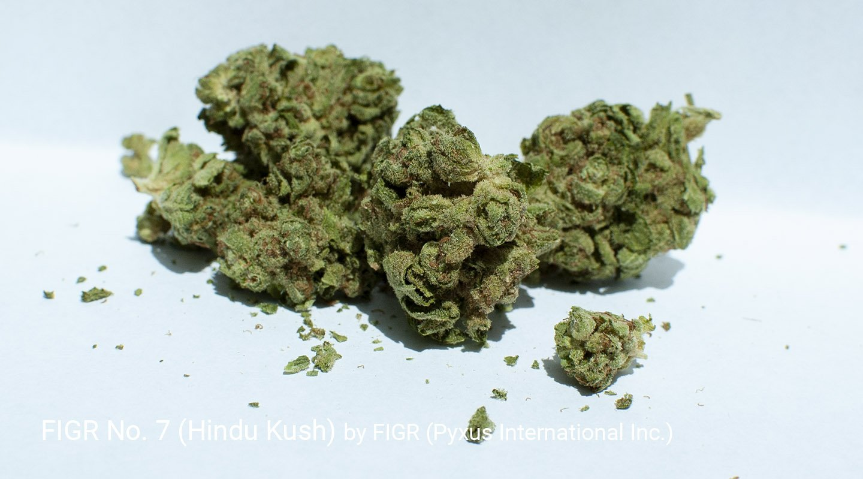 18.07% THC FIGR No. 7 aka Hindu Kush by FIGR