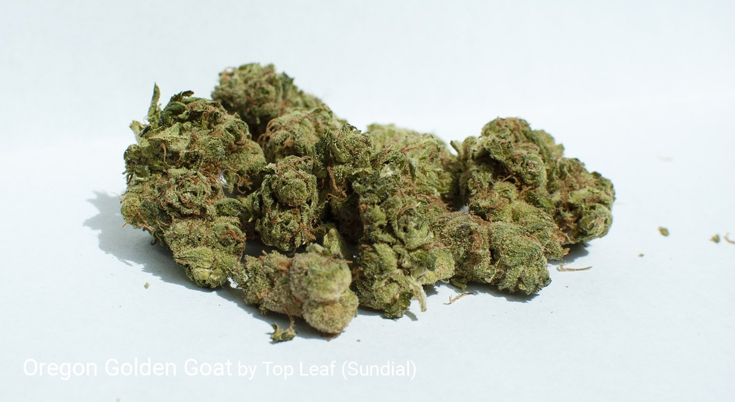 22.5% THC Oregon Golden Goat by Top Leaf (Sundial)