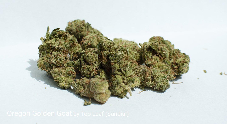 22.5% THC Oregon Golden Goat by Top Leaf (Sundial)