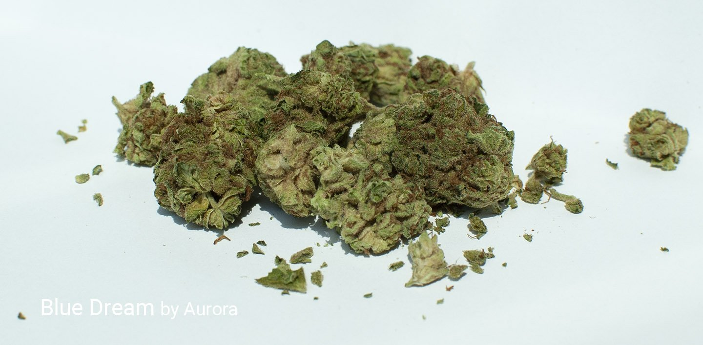 18.0% THC Blue Dream by Aurora