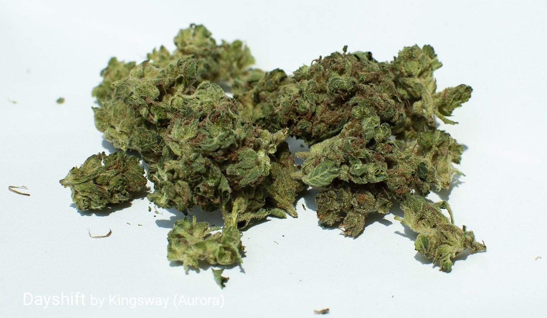 18.2% THC Dayshift by Kingsway (Aurora)
