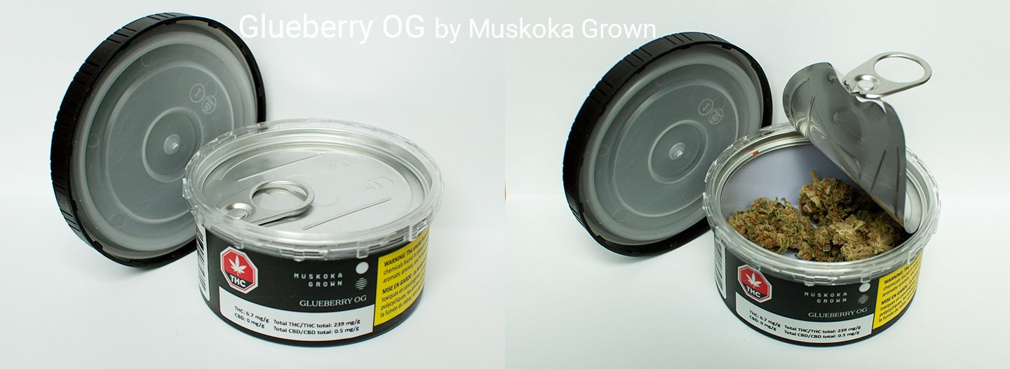 23.9% THC Glueberry OG by Muskoka Grown