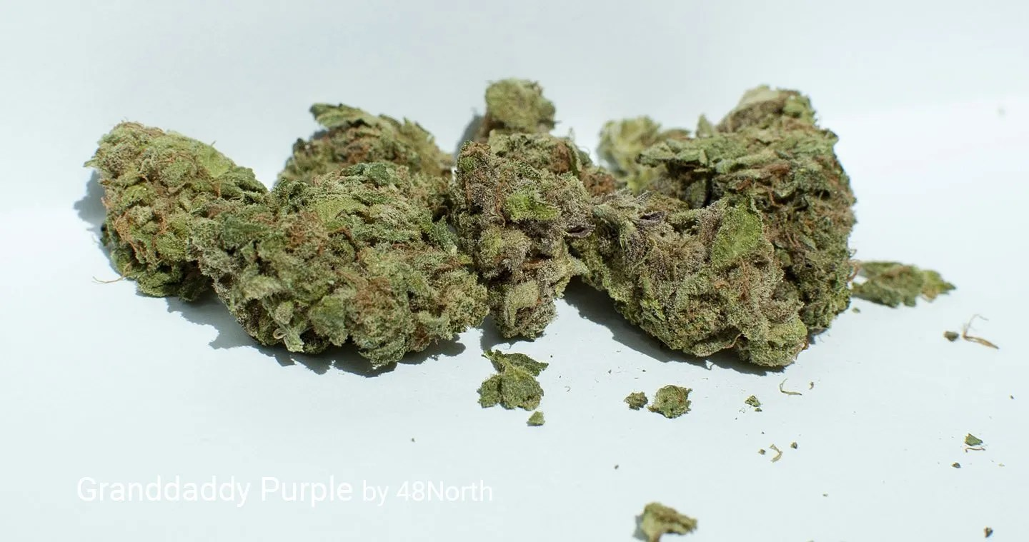 17.48% THC Granddaddy Purple by 48North