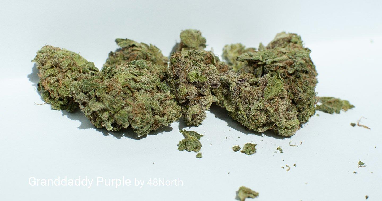 17.48% THC Granddaddy Purple by 48North
